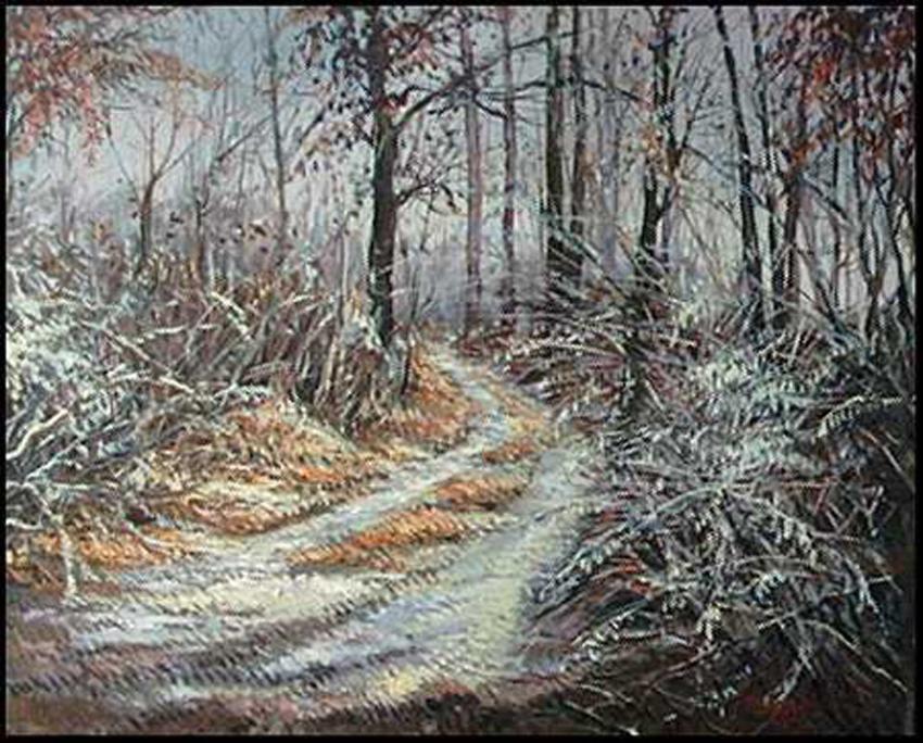 brinata-nel-bosco-CP