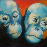 coppia-di-scimpanze