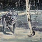 lupo-particolare-2