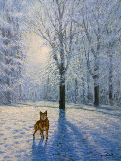 lupo-sulla-neve