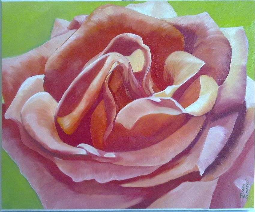 Rosa rossa 25x30
