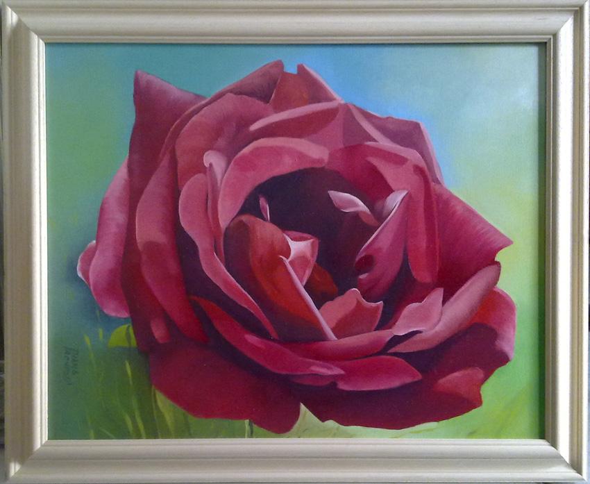 Rosa rossa 40x50