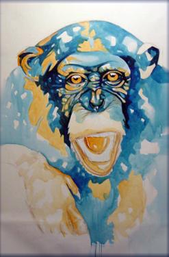 scimpanzé-2