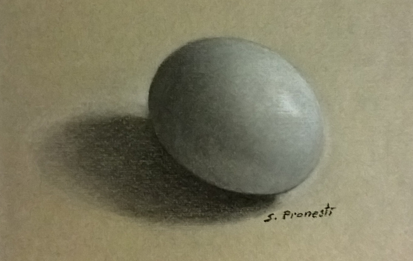uovo su sfondo grigio - Carboncini carbotello