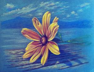 Fiore su sfondo blu - Carboncini colorati